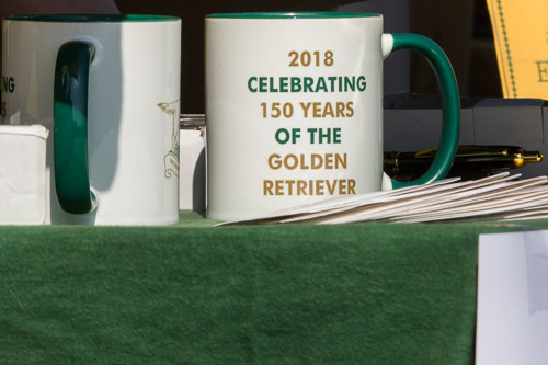 Golden Retriever Club 150th Anniversary Working Test-2_2