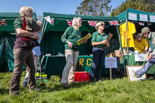 Golden Retriever Club 150th Anniversary Working Test-3